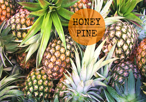Honey Pine 2 Cover Photo