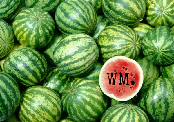 Watermelon Cover Photo